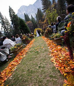 If You Are On A Budget And Hosting An Afternoon Outdoor Wedding In The Fall Youll Love This Idea Why Not Save Money Cancel Scattering Rose Petals